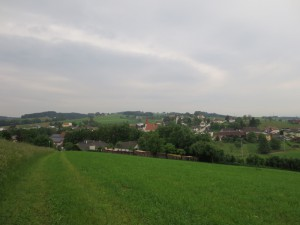 IMG_1394 (800x600)